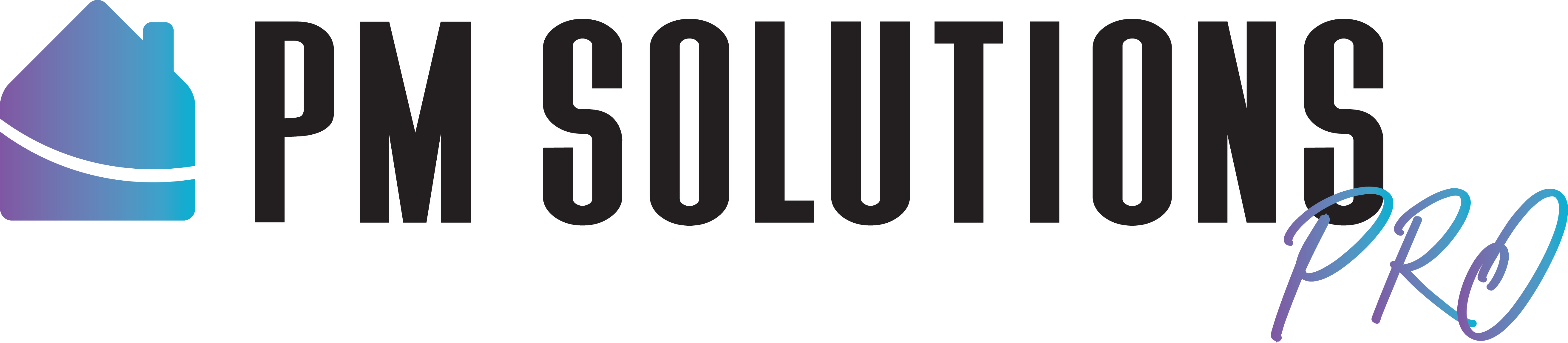 PM Solutions Pro